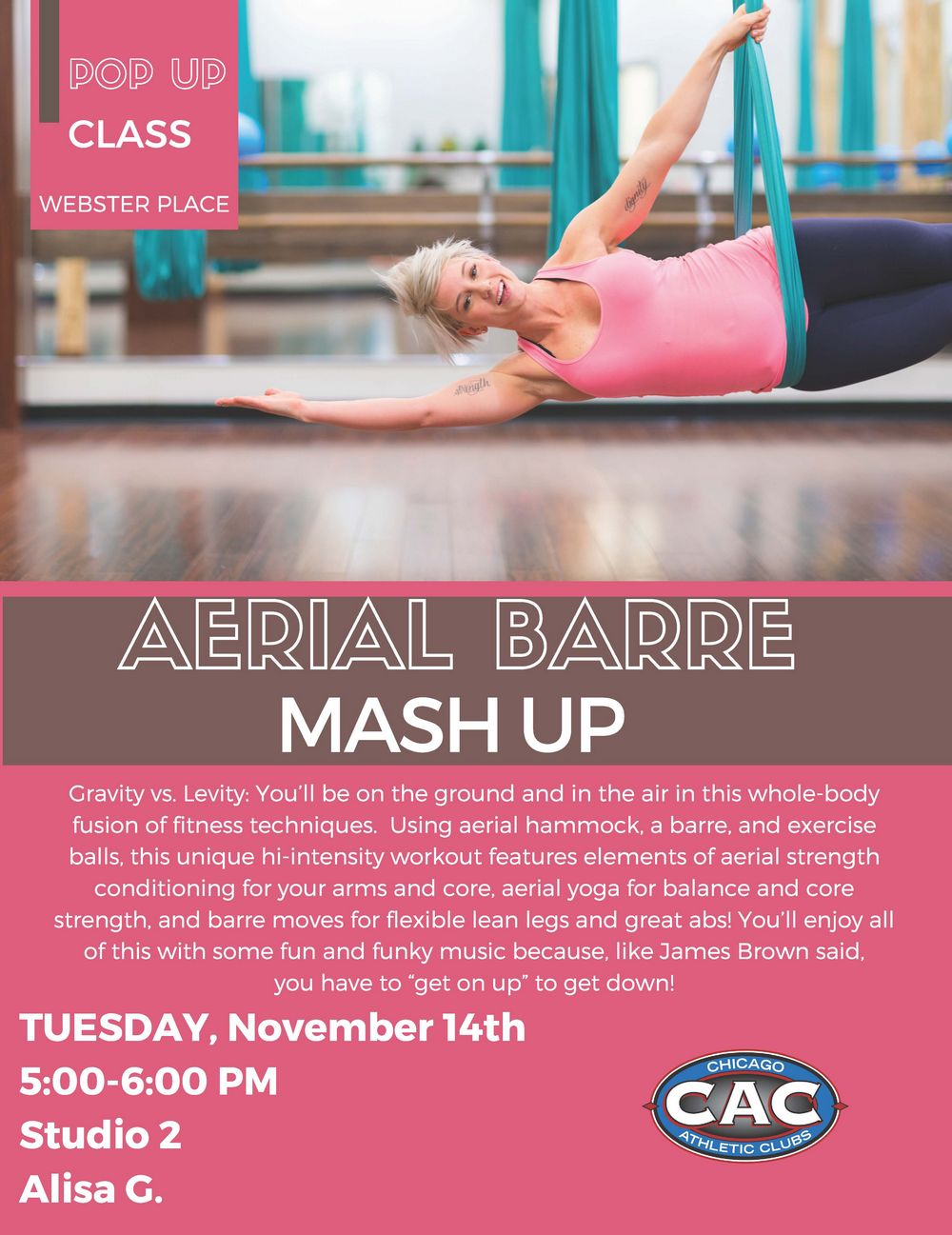 AERIAL BARRE MASH UP Webster.jpg