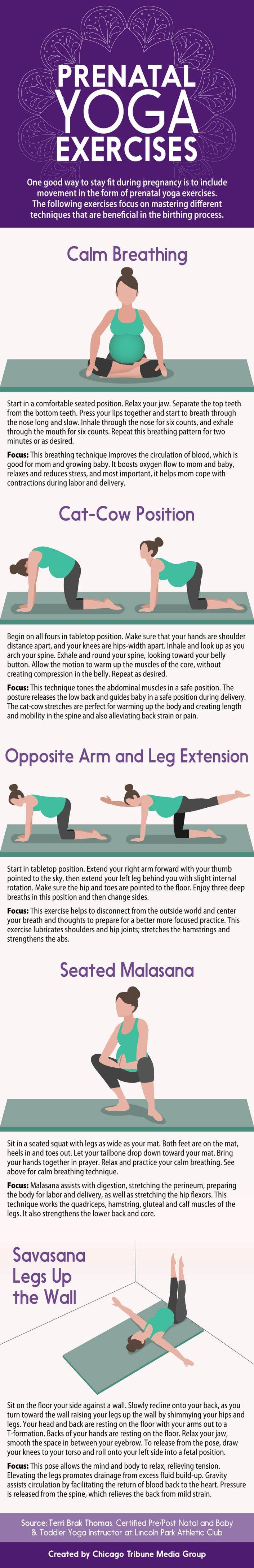 Top 5 Essential Prenatal Yoga Moves For Newbies