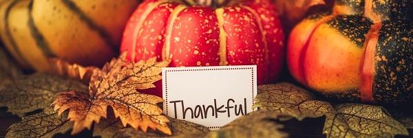 Thank You Pumpkins banner.jpg